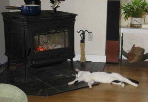 pacific energy 2 estufa de leña gato